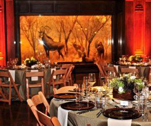 African Mamal Hall Dining